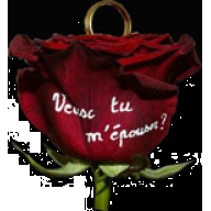 Rose imprim�e avec support bague