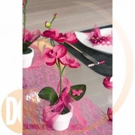 Orchid�e d�co