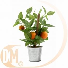Mandarine en pot