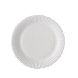 Assiettes en carton blanches par 100