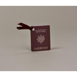 Vignette passeport aventurier
