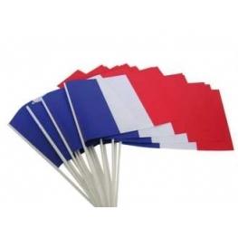 Drapeau France 45x30