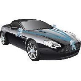 Kit décoration voiture