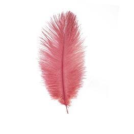 plume d�autruche 20 cm ( x3)