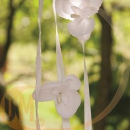 Orchidée par 6